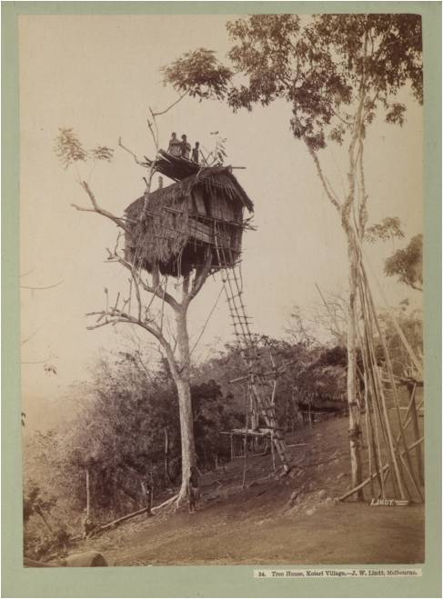 Tree House, Kolari village, Papua New Guinea
