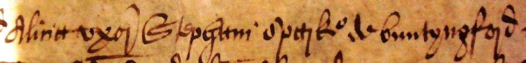 'Alicia uxor Stephani sparke de buntyngford'. The Latin text translates as 'Alice wife of Stephen Sparke of Buntingford'. Document reference: ASSI 35/18/5 m 18 (detail).