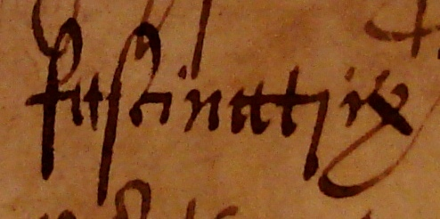 To twenty-first-century eyes, the 'long s' in 'fascinatrix' ('witch') looks like a letter f without a crossbar. Document reference: ASSI 35/18/5 m 18 (detail).