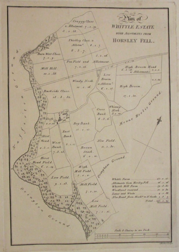 A clean copy of the 1805 estate map (catalogue reference MPI 1/162 no 17).