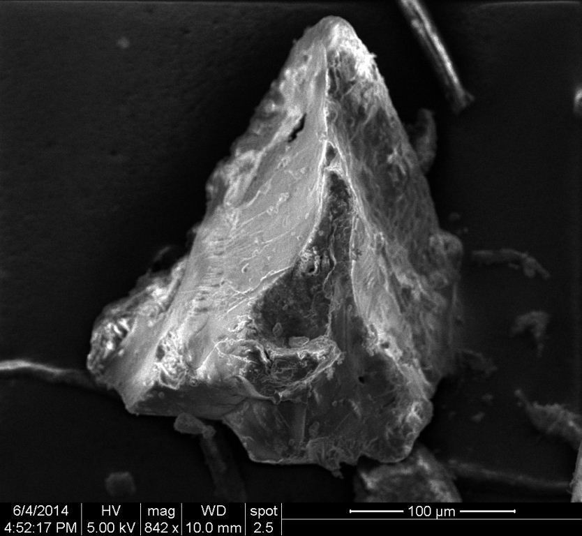 Figure 3. An SEM image of an organic particle primarily composed of carbon and oxygen