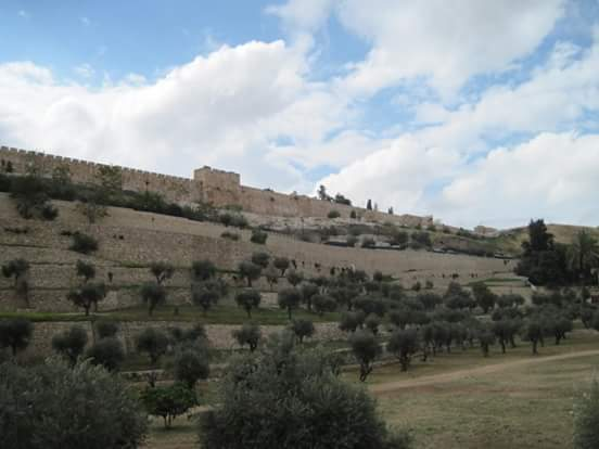Walls of Jerusalem from the Kidron Valley
