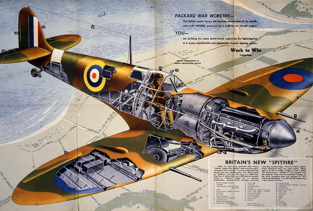 Illustration of a spitfire plane