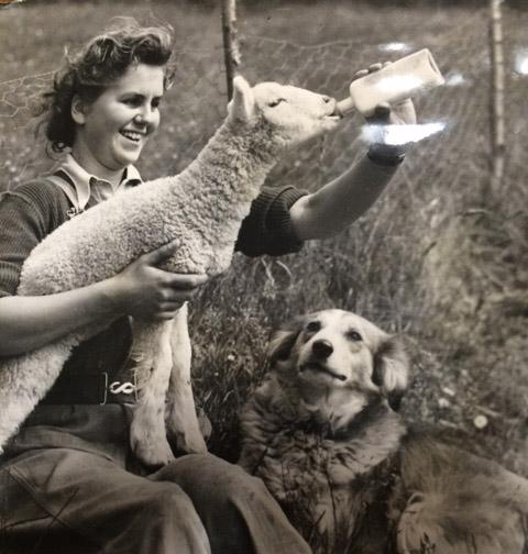 Image of a Land girl bottle-feeding a lamb