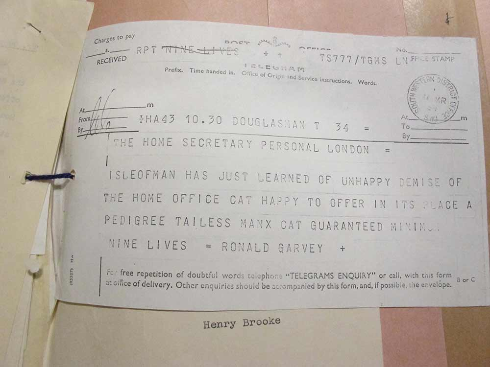 Image of Telegram from Lieutenant Governor of the Isle of Mann, offering 'a pedigree tailess Manx cat'