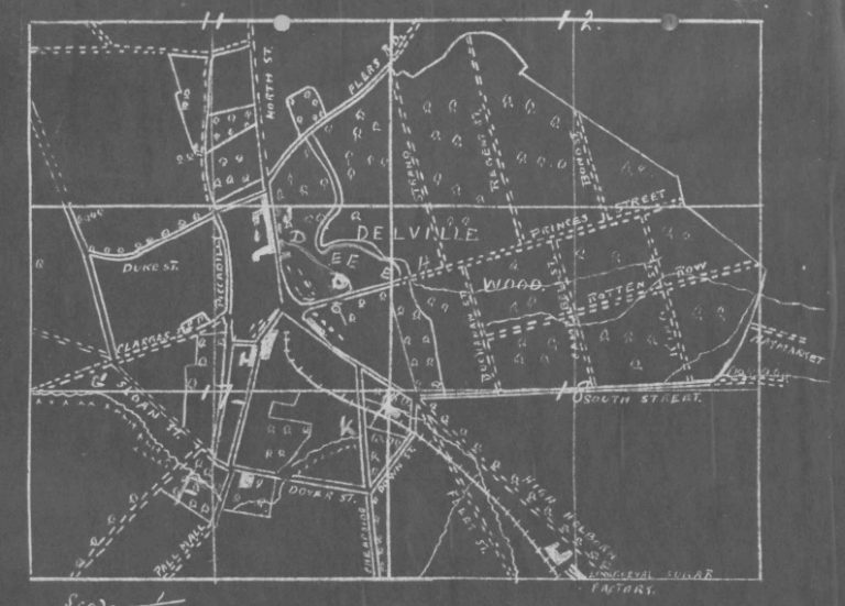 Map of Delville Wood (Cat ref: WO 95.1780)