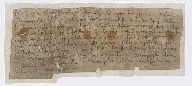 Image of a charter of King David I for Robert Bruce, datable to sometime between 1150 and David's death on 24 May 1153