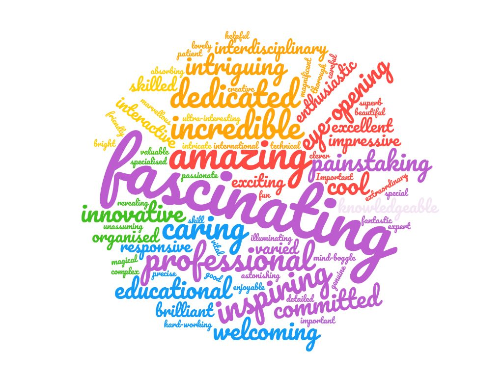 Describe conservation in three words. A Word cloud summarising feedback from 90 of our visitors to Collection Care.