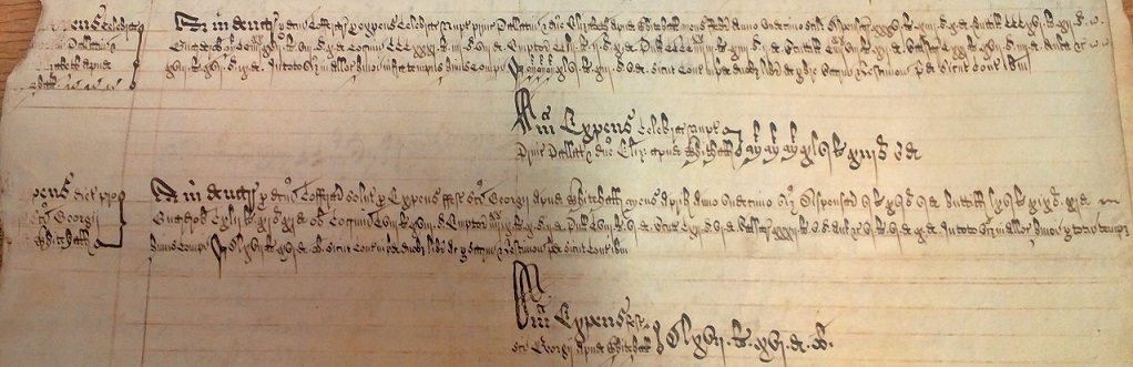 Declared Accounts of the Household: various large payments made for the wedding (E 351/1808)