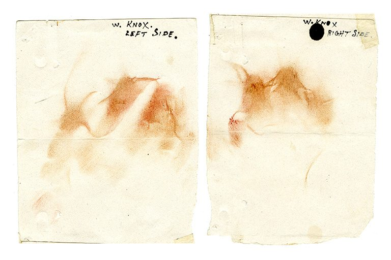 Make-up traces collected by police, 1938 (catalogue reference: CRIM 1/1041)