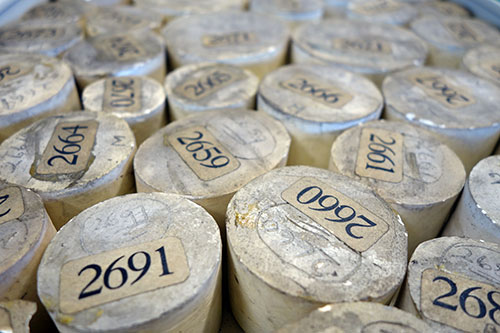 Plaster of Paris seal moulds, as they are currently stored - the aim is to rehouse them when digitisation is completed