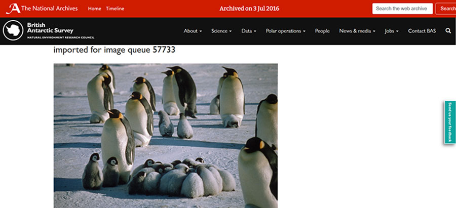 Snapshot of: https://www.bas.ac.uk/bas_image_queue/penguin-of-the-day/imported-for-image-queue-57733-8/ captured 3 July 2016. - click image to view archived website