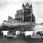 COPY 1/376 Whitby Abbey, 1886