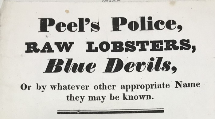 Peel's Police, RAW LOBSTERS, Blue Devils, Or by whatever other appropriate Name they may be known.