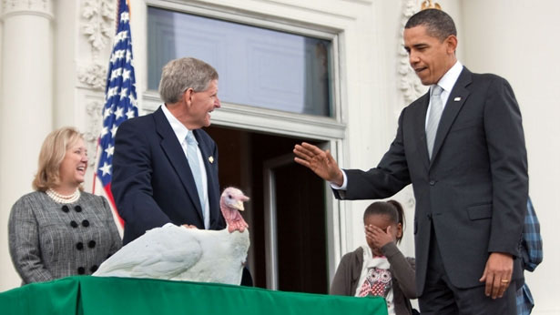 Colour photograph of President Barack Obama as he officially pardons the Thanksgiving Turkey in 2009.
