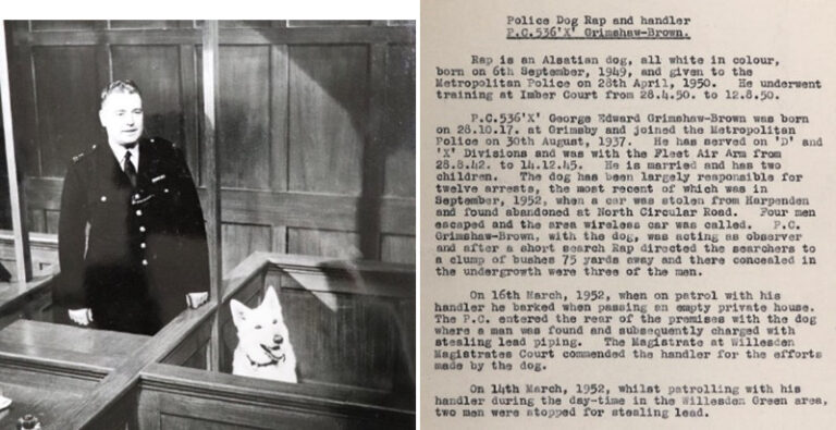 This montage shows police dog Rap in the witness box with his handler PC George Grimshaw-Brown, and on the right background information on Rap and his handler PC George Grimshaw-Brown.