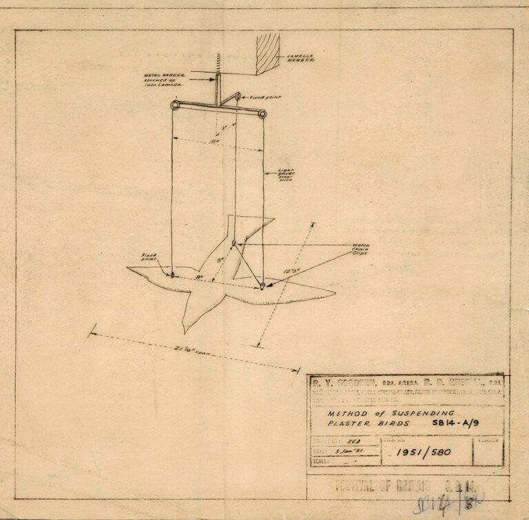 Drawing of a method of suspending plaster birds.